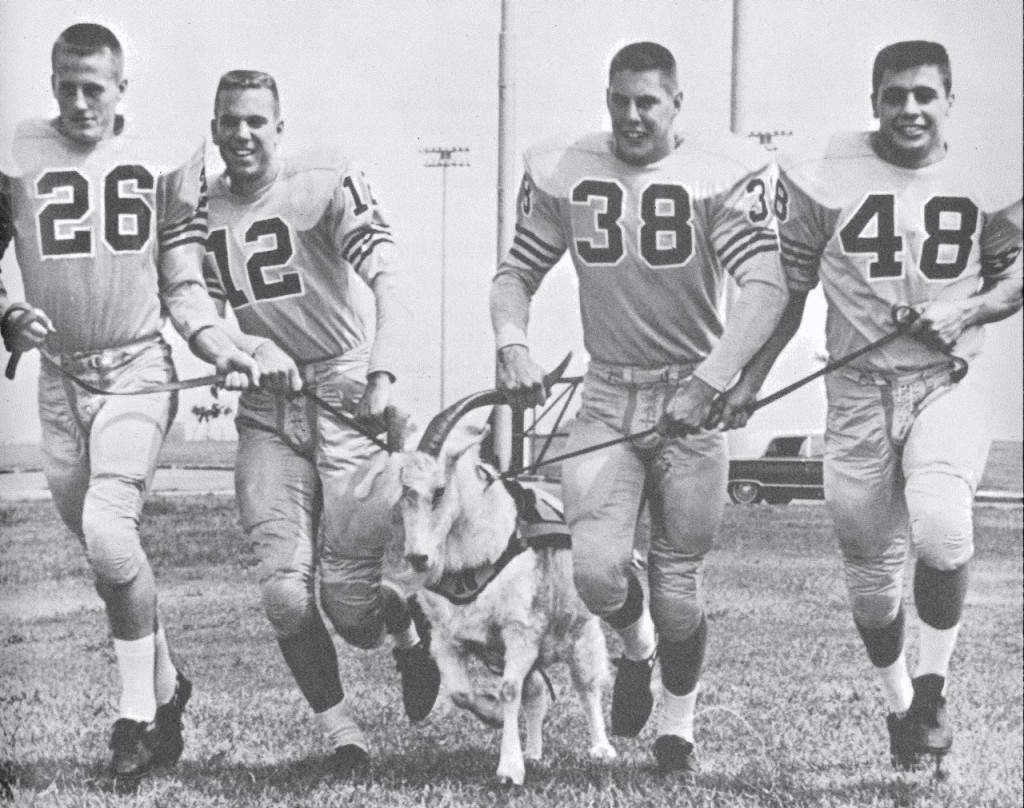 Navy's versatile backfield leads the academy mascot, Bill XV, onto the field for a 1962 practice (from left): Dick Earnest, Roger Staubach, Pat Donnelly and John Sai. (Author's collection)